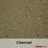 charcoal-efm