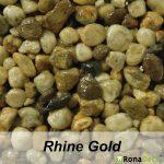 rhine-gold