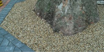 ronadeck eco tree pit