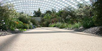 ronadeck resin bonded surfacing swansea botanical gardens